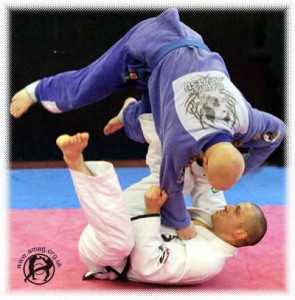 Japanese Vs Brazilian Jiu Jitsu: Difference Between Styles of Ju Jitsu
