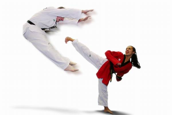 How to Study Taekwondo Techniques Online