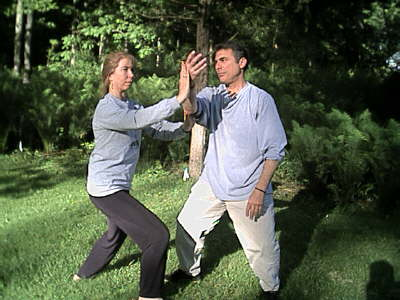 Kinematic and Dynamic Characters of Tai Chi Techniques