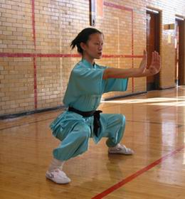 kung fu back stance technique