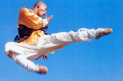 Top 25 Popular Wushu Styles