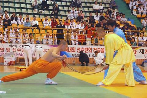 chinese wushu competition