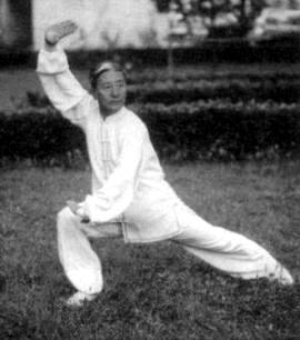 Hua Quan Origins, Techniques and Characteristics (China-style Chuan)